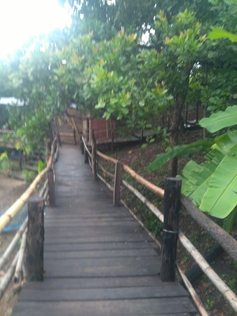 Banlung, กัมพูชา: The way to the bungalow and restaurants