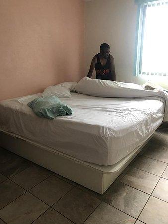 Isle of Palms Motel: IMG_1789_large.jpg