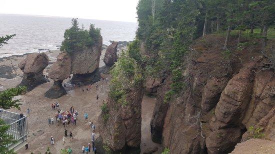 Hopewell Cape, Kanada: Hopewell Rocks