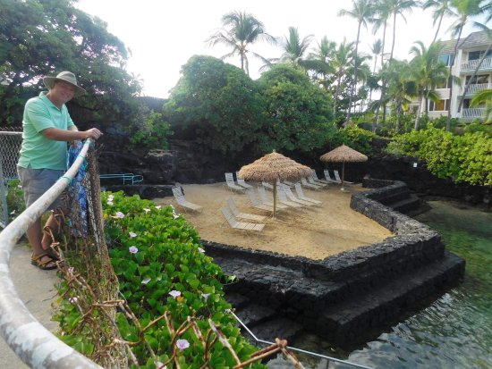 Royal Kona Resort: secluded beach on protected cove