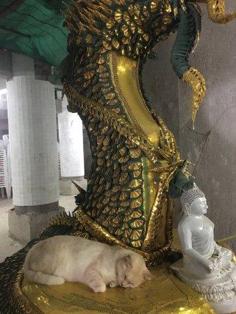 Chalong, Thaïlande : photo5.jpg