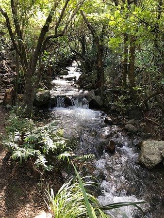 Darfield, Selandia Baru: photo1.jpg