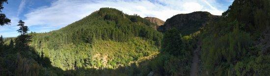 Darfield, Selandia Baru: photo4.jpg