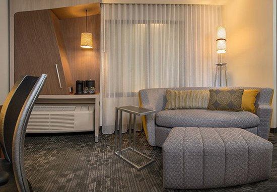 สเกอเนคเทอดี, นิวยอร์ก: LoungeAround Sofa