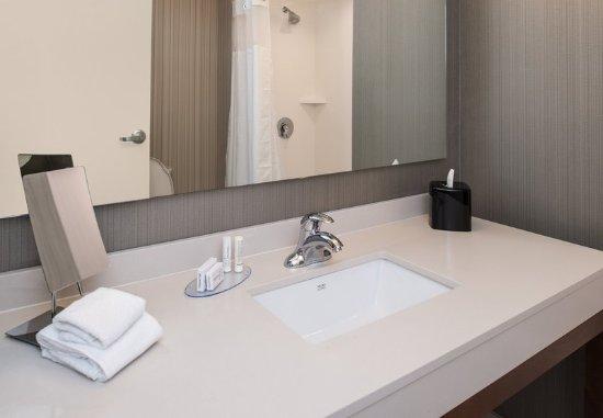 Farmington Hills, MI: Guest Room Bathroom - Vanity