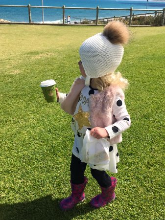 Quinns Rocks, Australien: My Babycinno + Take Away Healthy Tream and I am off to the Playground. I LOVE Blue Vue Cafe.