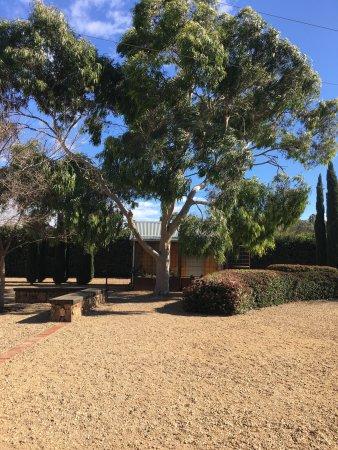 Seppeltsfield, Australia: photo4.jpg