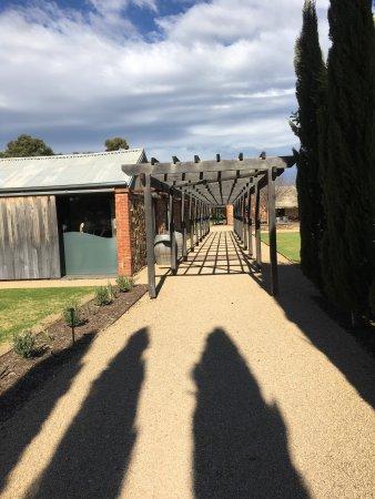 Seppeltsfield, Australia: photo5.jpg