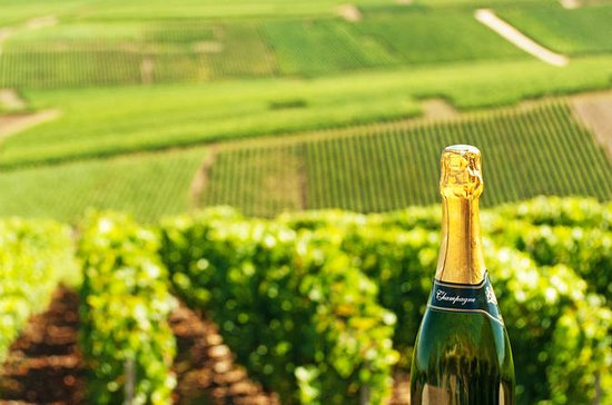 Luxury Champagne Region Day Trip from...