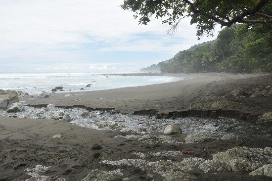 Osa Peninsula, Costa Rica: photo4.jpg
