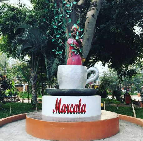 "Marcala, Honduras: ""Taza de la Excelencia"" for being the best coffee seed producer"