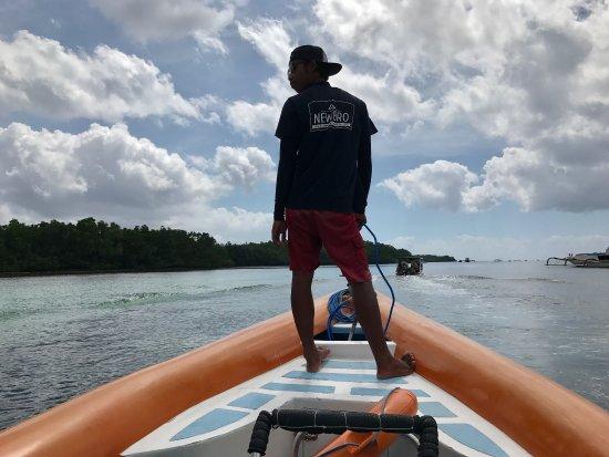 Newbro Surfing: photo0.jpg