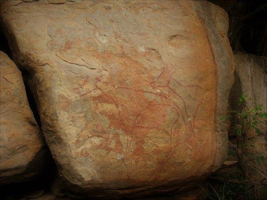 Chinnar Wildlife Sanctuary: Pre-historic rock painting