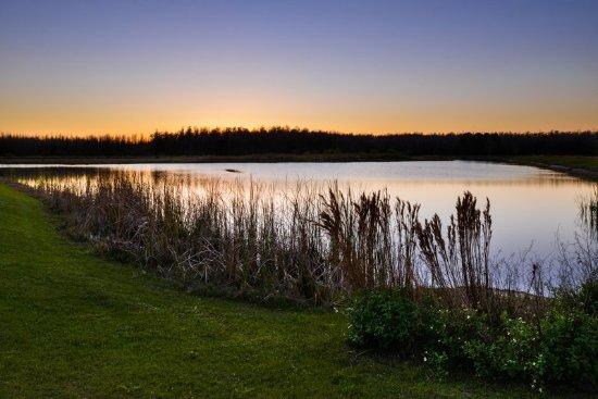 Trinity, FL: Water Front Lake Views at Sunset