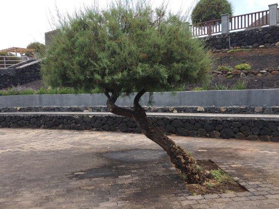 Parador de la Palma: photo1.jpg