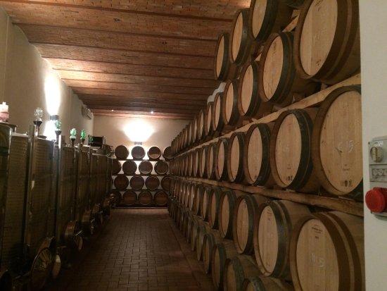 Radda in Chianti, อิตาลี: Casalvento Winery