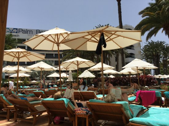 Seaside Palm Beach: photo1.jpg