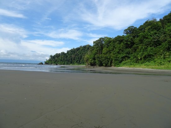 Sierpe, Costa Rica: photo1.jpg