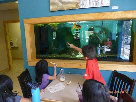 Duncan, كندا: indoor aquarium