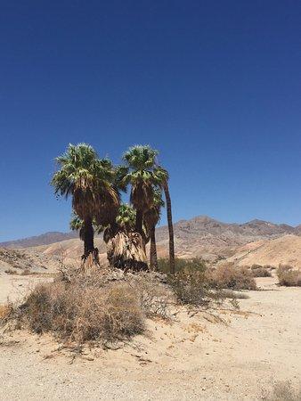 Borrego Springs, Kalifornien: photo0.jpg