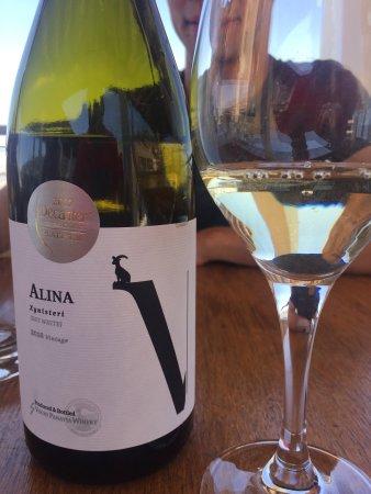 Vouni Panayia Winery: photo4.jpg
