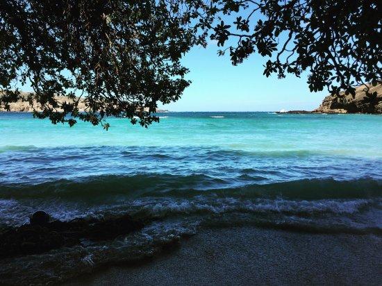 Hanauma Bay Nature Preserve: photo2.jpg