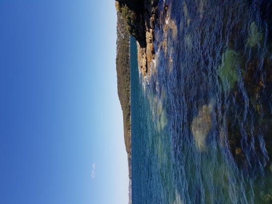 Manly Sea Life Sanctuary: 20170818_100050_large.jpg