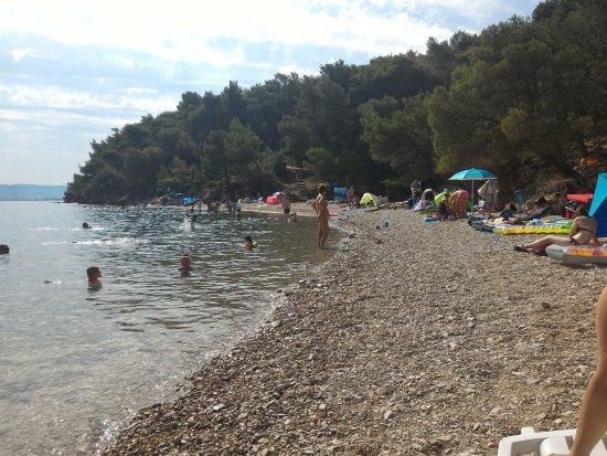 Kanegra, Kroatië: IMG_20170809_101032788_large.jpg