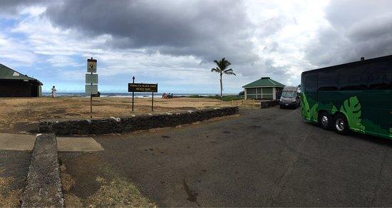 Punaluu Black Sand Beach: photo2.jpg