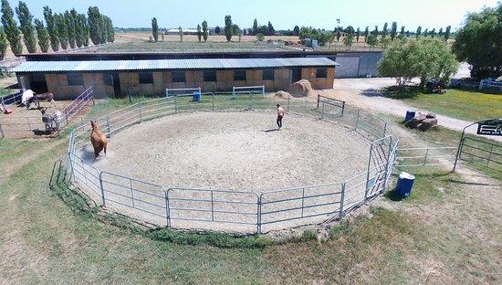 Tondino Per Cavalli.Tondino Cavalli Picture Of Tuscany Village Club Ranch