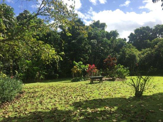 Diwan, Australia: Gorgeous gardens