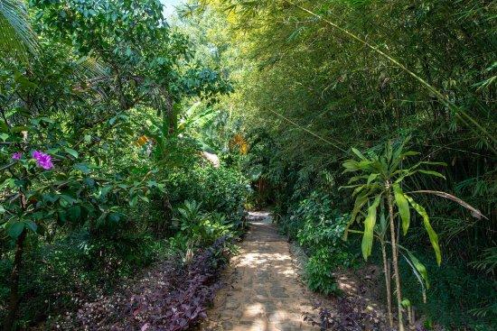 Freedomland Phu Quoc Resort: Path Entrance