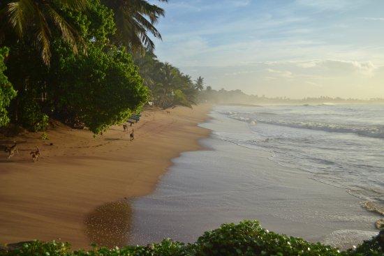 Tangalle, Sri Lanka: Medilla Beach