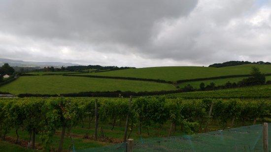 Brading, UK: View 1