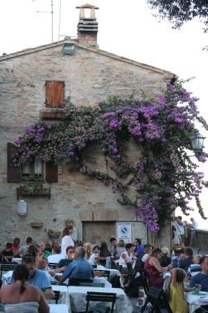 Torre di Palme, Italie : bougainville e visione del locale