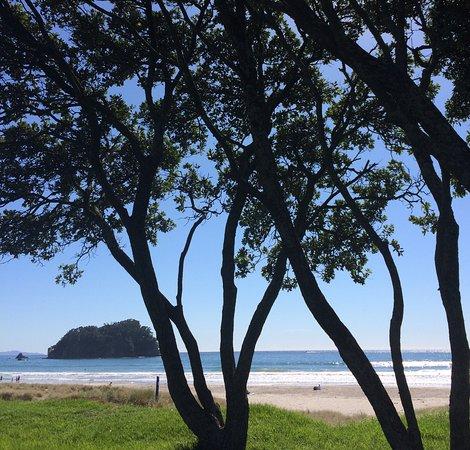 Maunganui Beach: Beautiful quiet beach