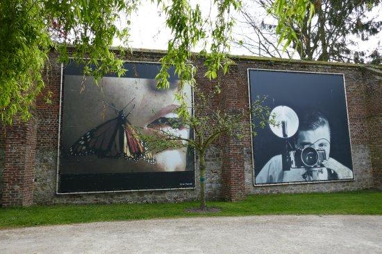 Musée de la Photographie : un jardin ouvert sur le quartier
