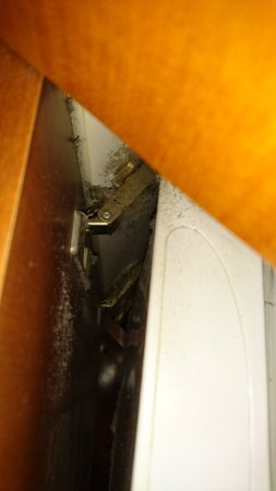 Seasons Botanic Gardens: thick amounts of dust around the fridge door.