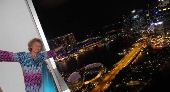 Swissotel The Stamford Singapore: overlooking the marina bay hotel and the harbour