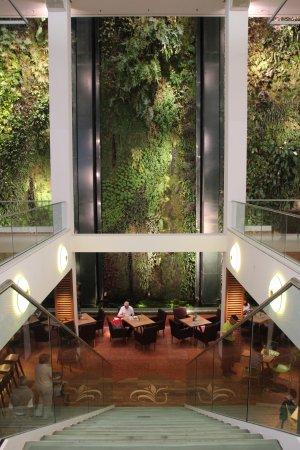 Dussmann das KulturKaufhaus: Hängende Gärten und Treppe zum Café