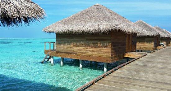 Water Villa Picture Of Cocoon Maldives Ookolhufinolhu Tripadvisor