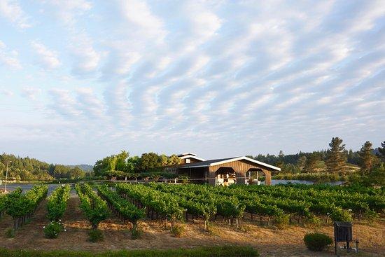 Handley Cellars Winery
