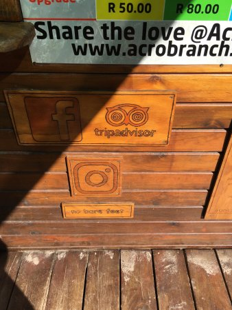 Acrobranch Wildwoods: photo2.jpg