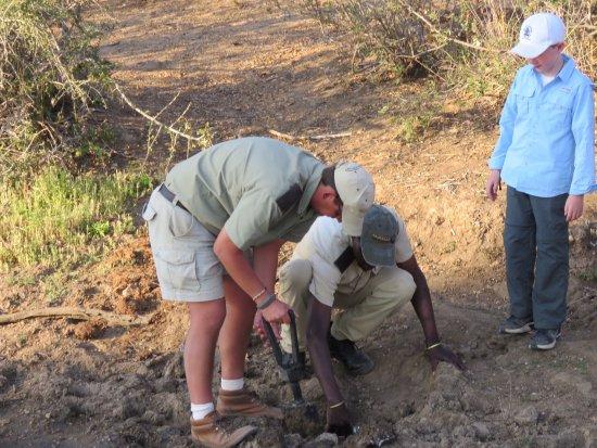 Kambaku Safari Lodge: photo5.jpg