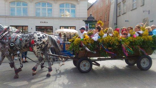 Tuchhallen (Sukiennice): sfilata festa folkloristica