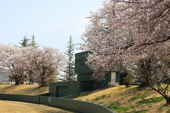 Otori Castle Ruins
