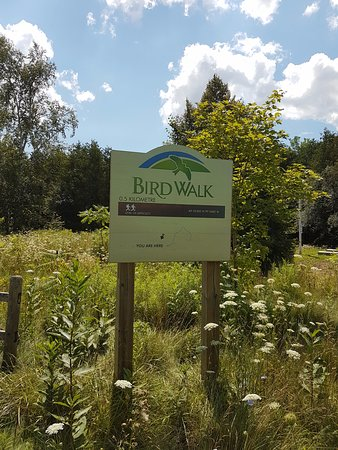 Ajax, Kanada: bird walk trail