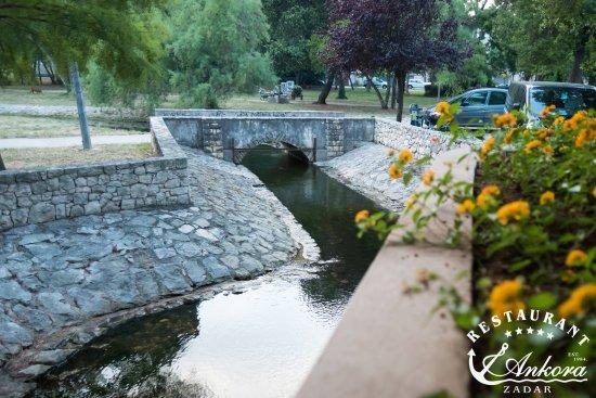 Ankora: In the park