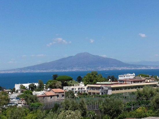 Comfort Hotel Gardenia Sorrento Reviews
