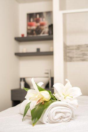 auberge de nicey hotel romilly sur seine france voir. Black Bedroom Furniture Sets. Home Design Ideas